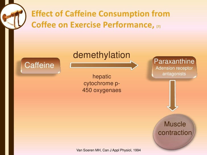 effects of caffine 1,3,7-trimethylxanthine (also known as caffeine) is a naturally-occurring stimulant substance of the xanthine class notable effects include stimulation, wakefulness.