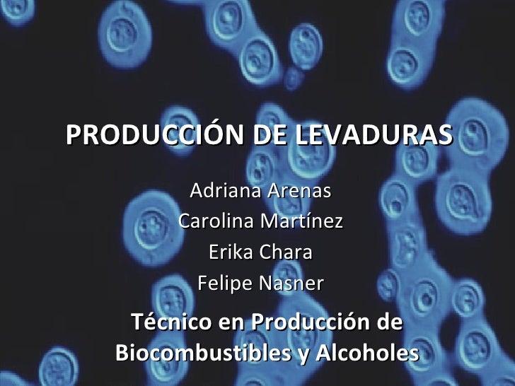 PRODUCCIÓN DE LEVADURAS Adriana Arenas Carolina Martínez Erika Chara Felipe Nasner Técnico en Producción de Biocombustible...