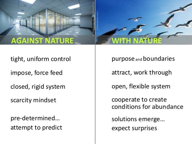 purposeand boundaries attract, work through open, flexible system cooperate to create conditions for abundance solutions e...