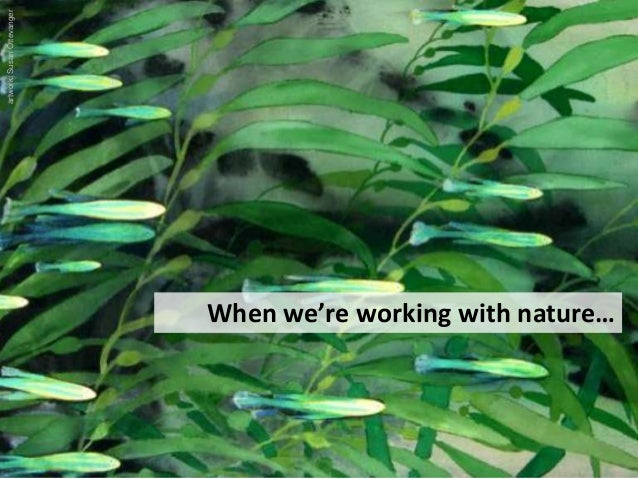 When we're working with nature… artwork:SusanOttevanger