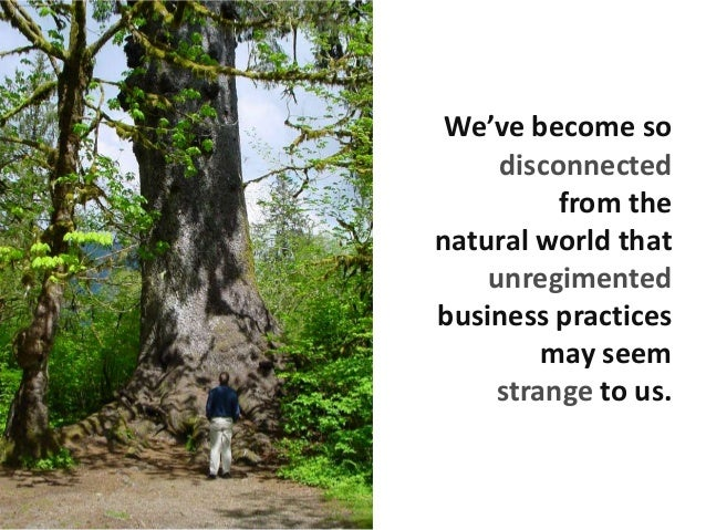 We've become so disconnected from the natural world that unregimented business practices may seem strange to us.