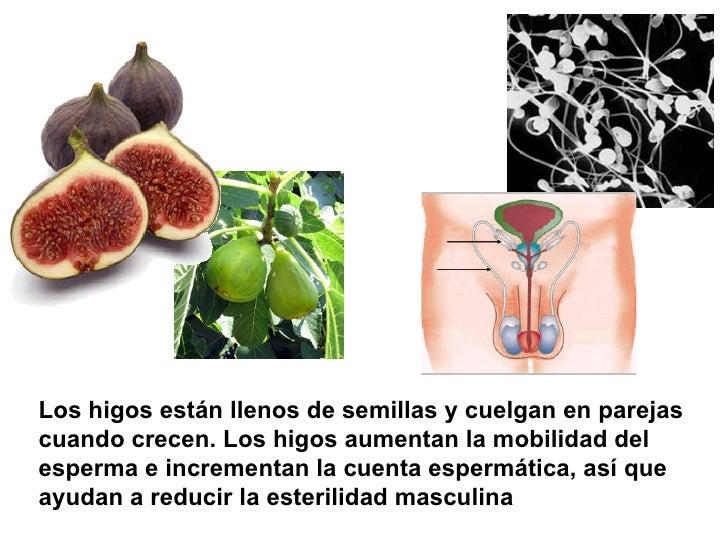 Los higos están llenos de semillas y cuelgan en parejas cuando crecen. Los higos aumentan la mobilidad del esperma e incre...