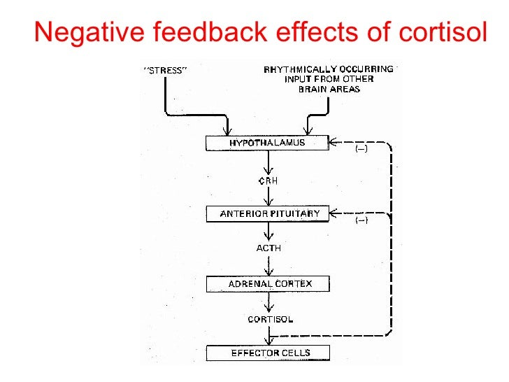 "positive and negative reactions of starbucks control systems Social media and customer dialog management at starbucks social  1310- 1324 6 mahajan, v, muller, e, and kerin, r ""introduction strategy for new  products with positive and negative  limited impact, worked to dampen  feedback volume  extending conventional information systems into."
