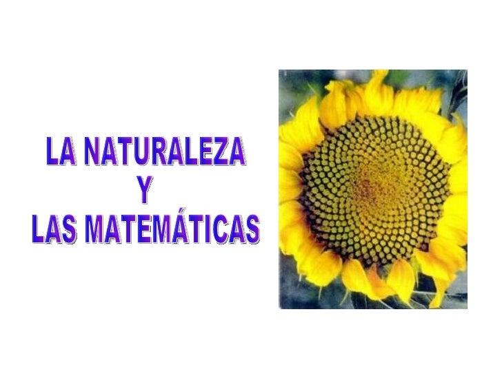 LA NATURALEZA Y LAS MATEMÁTICAS