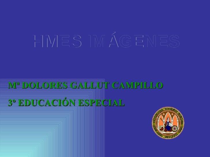 HMES IMÁGENES  Mª DOLORES GALLUT CAMPILLO 3º EDUCACIÓN ESPECIAL