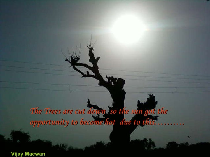 The Trees are cut down  so the sun got the opportunity to become hot  due to this………. Vijay Macwan