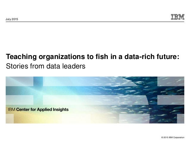 © 2015 IBM Corporation Teaching organizations to fish in a data-rich future: Stories from data leaders July 2015