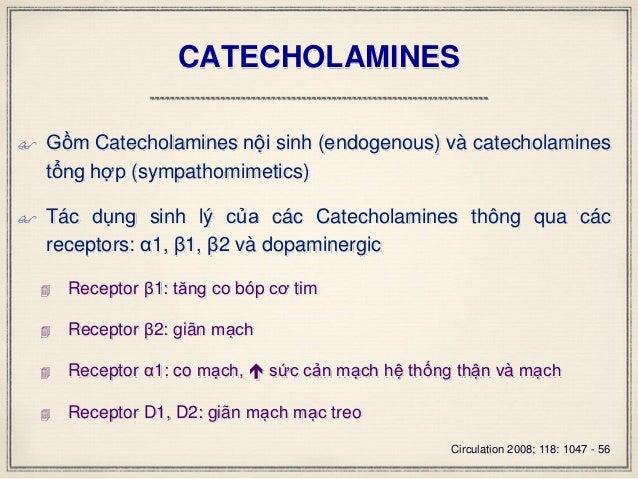 CATECHOLAMINES  Gồm Catecholamines nội sinh (endogenous) và catecholamines tổng hợp (sympathomimetics)  Tác dụng sinh lý...