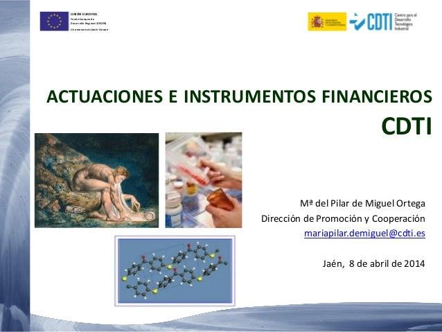 UNIÓN EUROPEA Fondo Europeo de Desarrollo Regional (FEDER) Una manera de hacer Europa ACTUACIONES E INSTRUMENTOS FINANCIER...