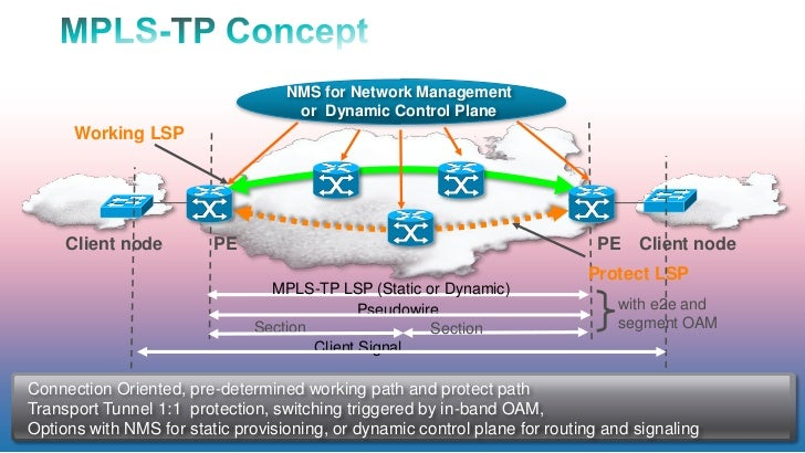 NMS for Network Management                                    or Dynamic Control Plane      Working LSP     Client node   ...