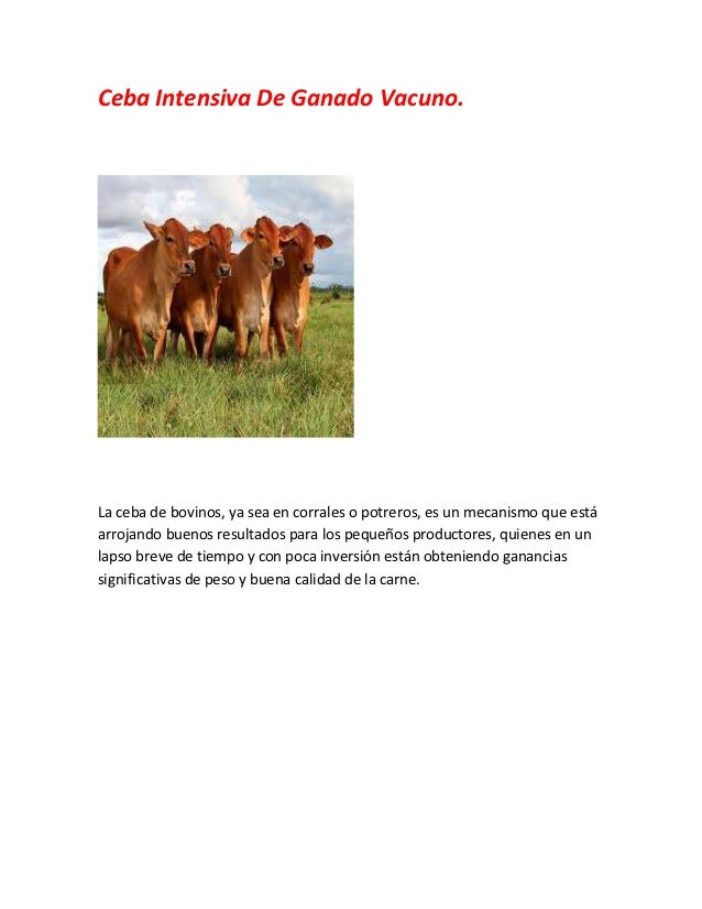Ceba Intensiva De Ganado Vacuno.La ceba de bovinos, ya sea en corrales o potreros, es un mecanismo que estáarrojando bueno...