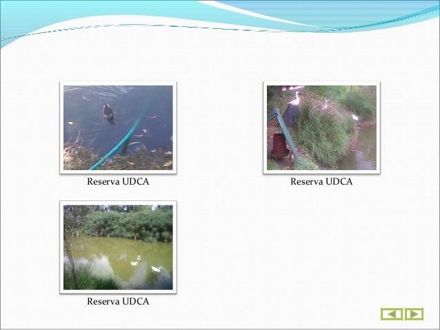 Ingeniería Geográfica & Ambiental
