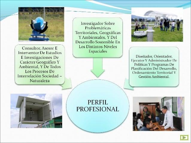 INFORMACION   GENERAL DE LA     CARRERANIVEL DE FORMACIONProfesional Universitario