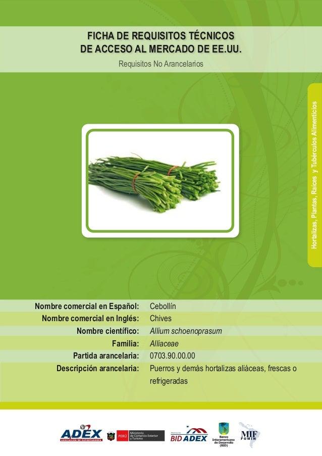 Cebollín Chives Allium schoenoprasum Alliaceae 0703.90.00.00 Puerros y demás hortalizas aliáceas, frescas o refrigeradas N...