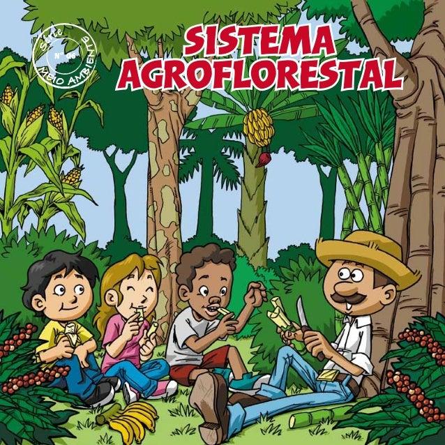 sistema agroflorestal M EIO AMBIENTE Nº 06
