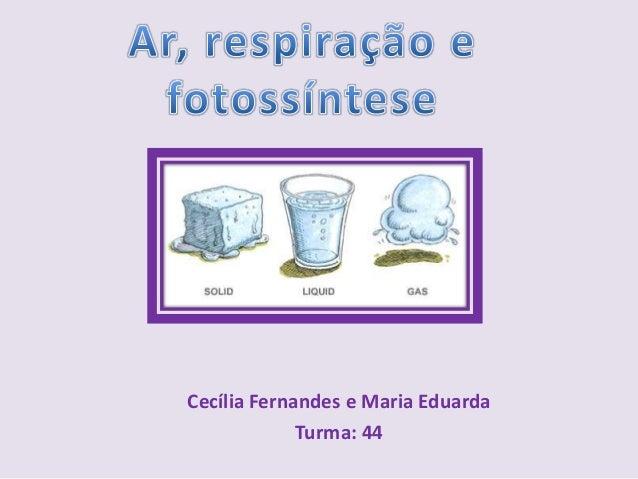 Cecília Fernandes e Maria EduardaTurma: 44