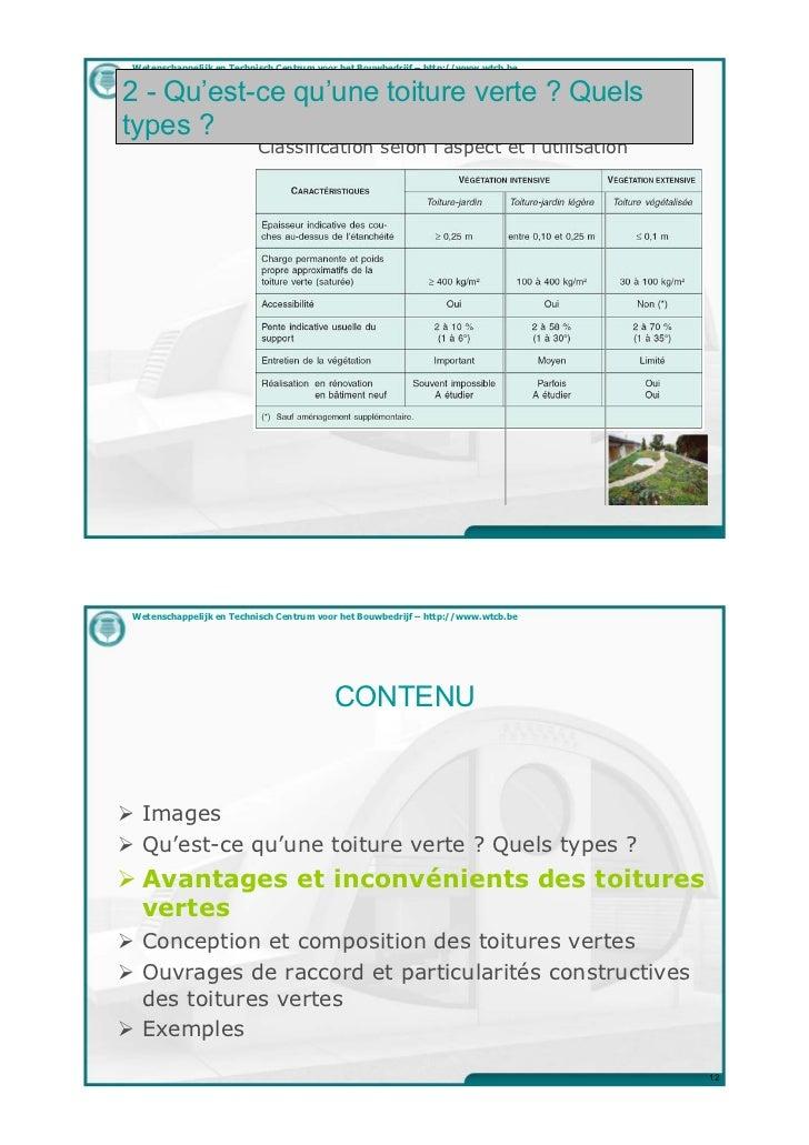 avantages et d savantages d 39 une toiture verte. Black Bedroom Furniture Sets. Home Design Ideas