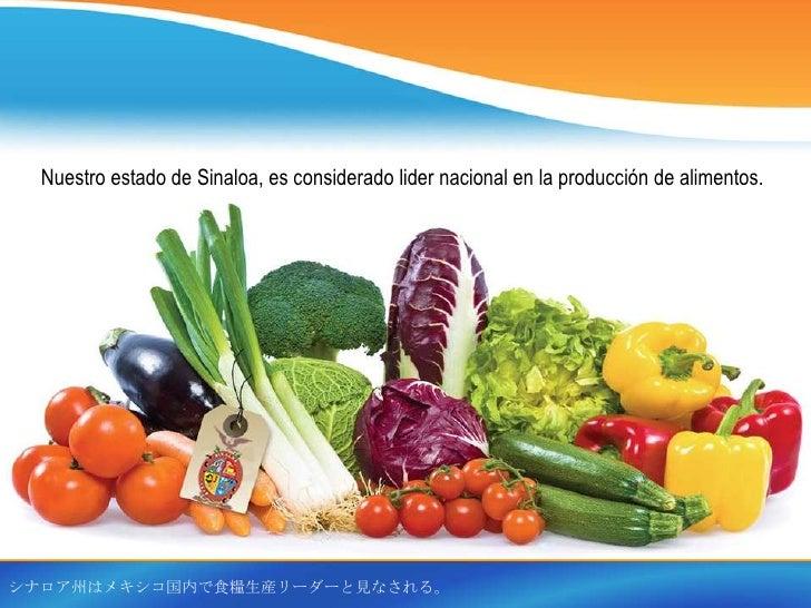 Nuestro estado de Sinaloa, es considerado lider nacional en la producción de alimentos.シナロア州はメキシコ国内で食糧生産リーダーと見なされる。