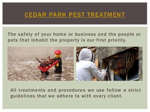Cedar Park Pest Service Slide 2