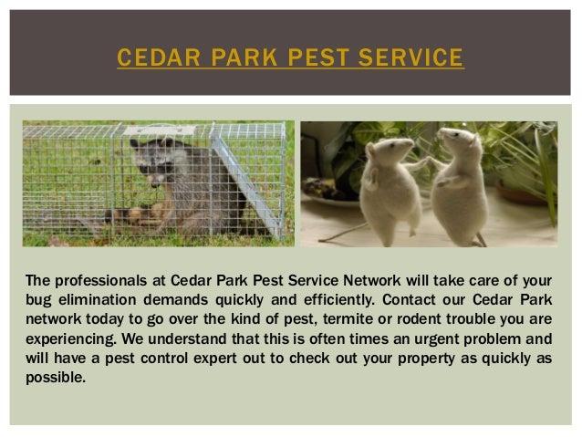 Cedar Park Pest Service Slide 3