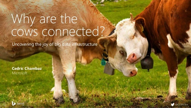 Uncovering the joy of big data infrastructure Cedric Chambaz Microsoft Why are the cows connected? @CEDRICtus
