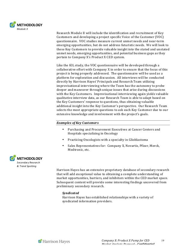 what is strategy essay environment