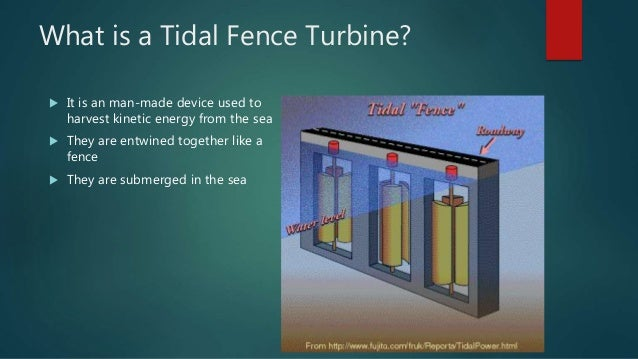 tidal presentation