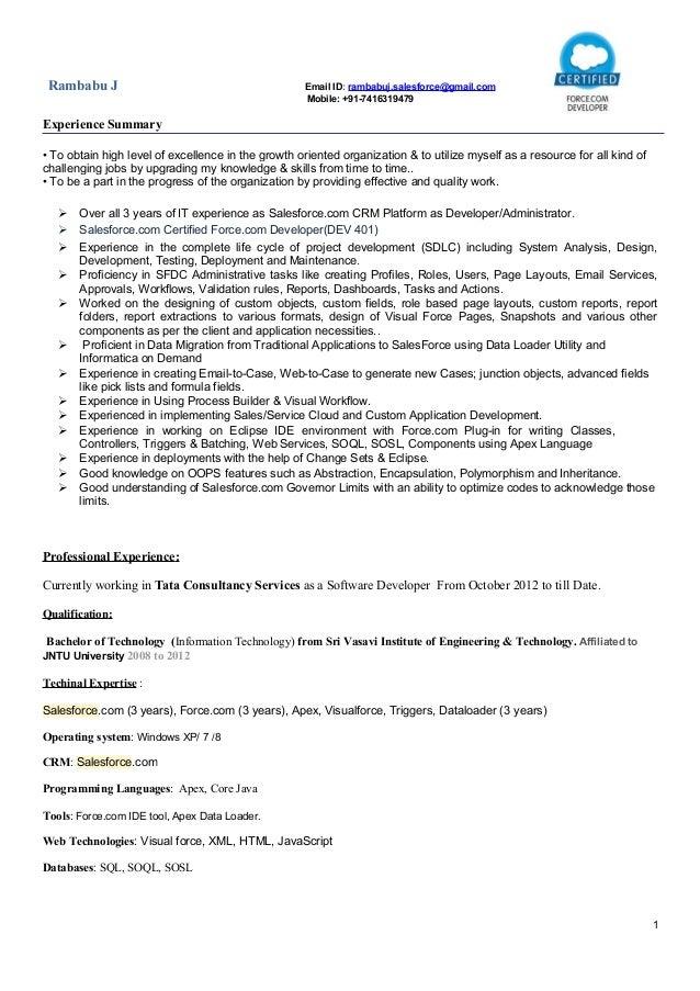 sfdc developer resume twnctry
