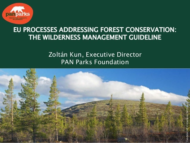 EU PROCESSES ADDRESSING FOREST CONSERVATION: THE WILDERNESS MANAGEMENT GUIDELINE Zoltán Kun, Executive Director PAN Parks ...
