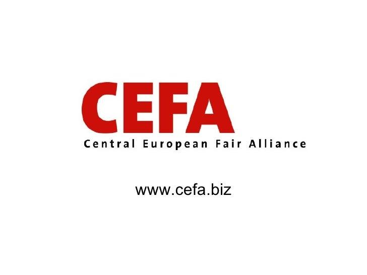 www.cefa.biz
