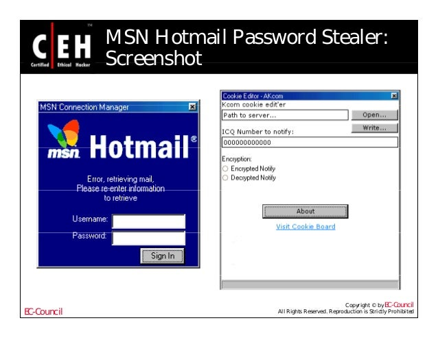 hotmail password stealer