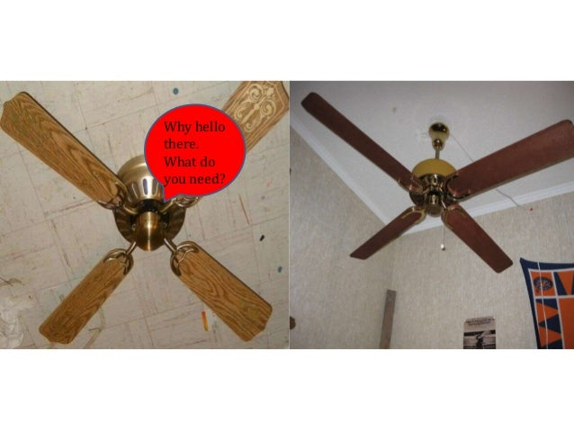 Ceiling fan conversations and arguments my version how is your bearings aloadofball Gallery