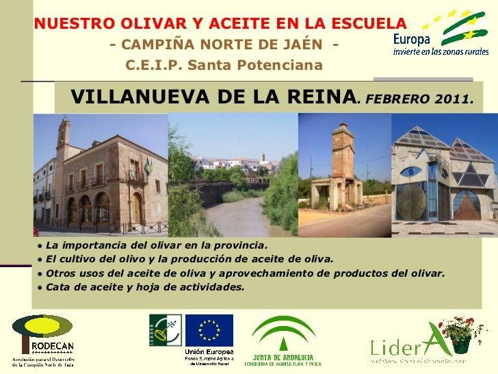 ●  La importancia del olivar en la provincia. ●  El cultivo del olivo y la producción de aceite de oliva. ●  Otros usos de...