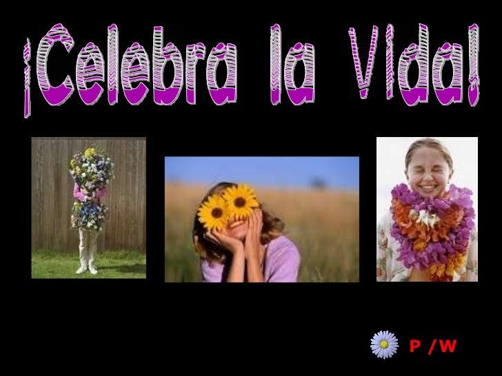 ¡Celebra la Vida! P /W