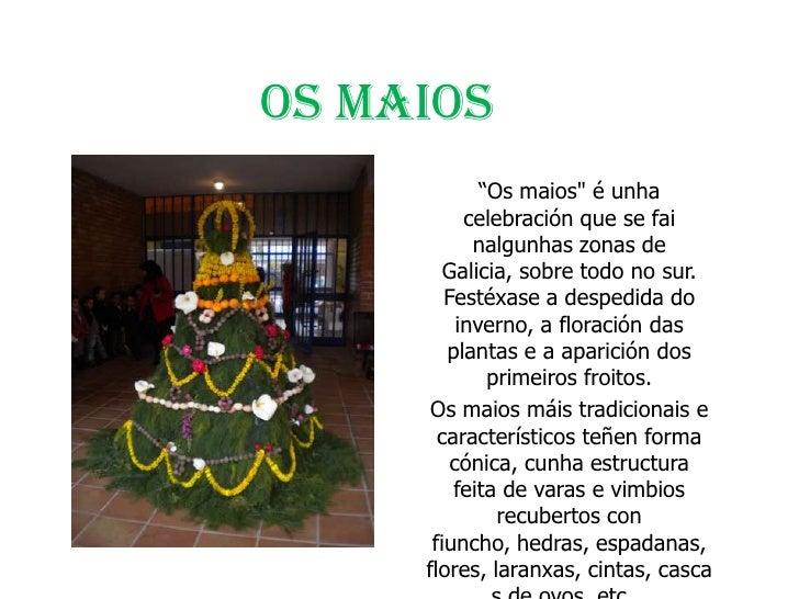 """OS MAIOS             """"Os maios"""" é unha           celebración que se fai            nalgunhas zonas de        Galicia, sobr..."""