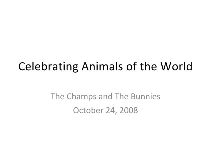 Celebrating Animals of the World The Champs and The Bunnies October 24, 2008