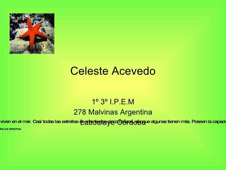 Celeste Acevedo 1º 3º I.P.E.M 278 Malvinas Argentina Laboulaye Córdoba  ...