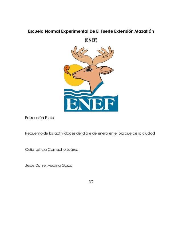 Escuela Normal Experimental De El Fuerte Extensión Mazatlán (ENEF) Educación Física Recuento de las actividades del día 6 ...