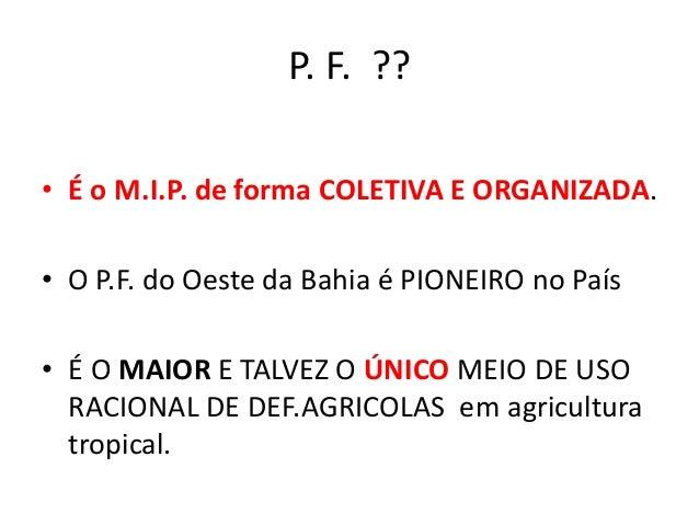 Programa.Fitossanitário - M.I.P. BAHIA Slide 2