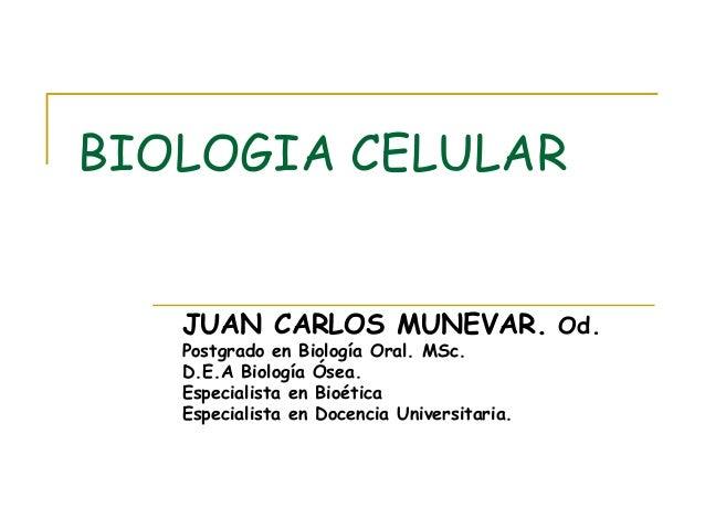 BIOLOGIA CELULAR JUAN CARLOS MUNEVAR. Od. Postgrado en Biología Oral. MSc. D.E.A Biología Ósea. Especialista en Bioética E...