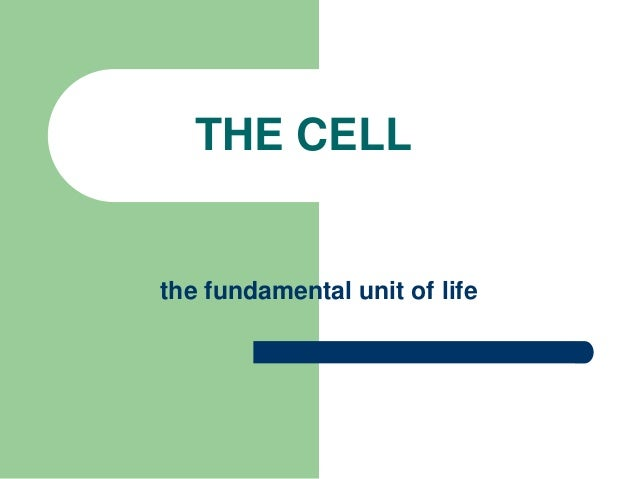 THE CELL the fundamental unit of life