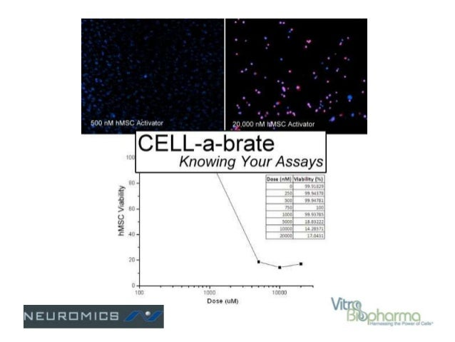 Our Expertise • Provide Fully Validated Human Stem and Primary Cells and Media – Published* + Internal Research Applicatio...