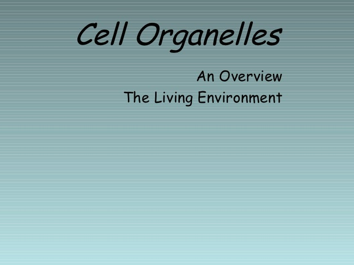 Cell Organelles <ul><li>An Overview </li></ul><ul><li>The Living Environment </li></ul>
