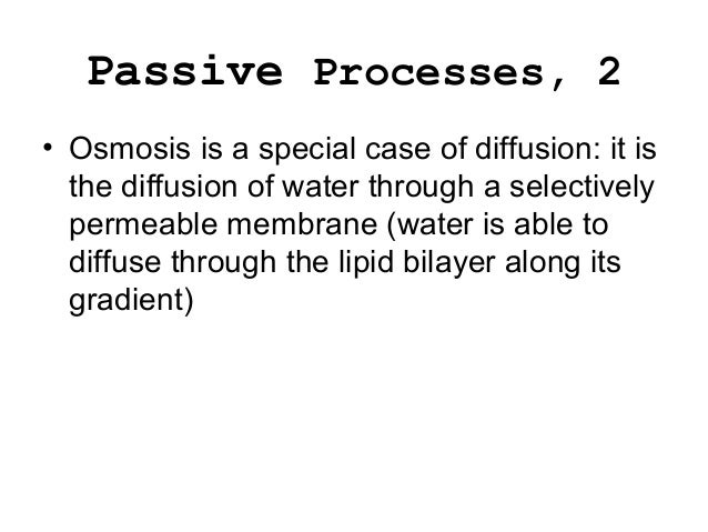 when a solute is able to diffuse through a membrane Explain the role of a selectively permeable membrane in osmosis a solute will diffuse until it spreads and osmosis through a selectively permeable.