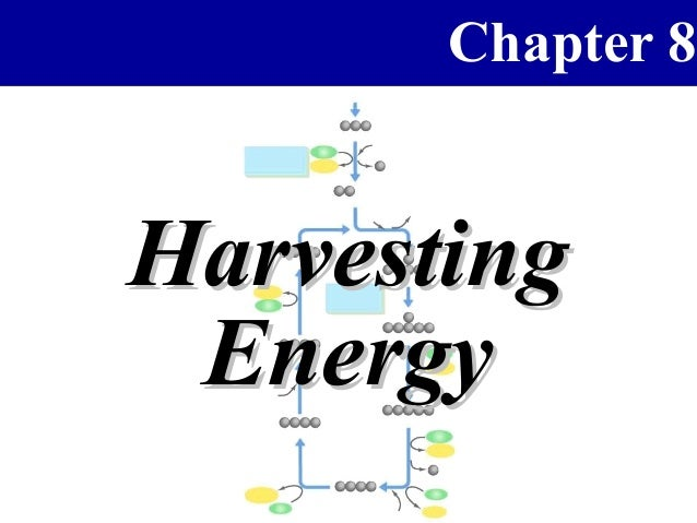 Chapter 8Harvesting Energy