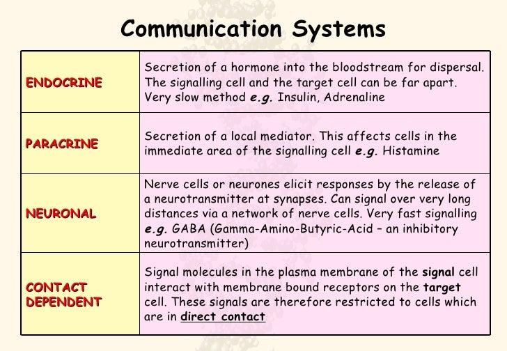Cell Signal Analogies Worksheet Answers - Worksheet Printable Blog