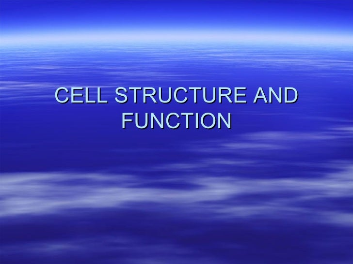 Worksheets Cell Structure Function Worksheet cell structure and function