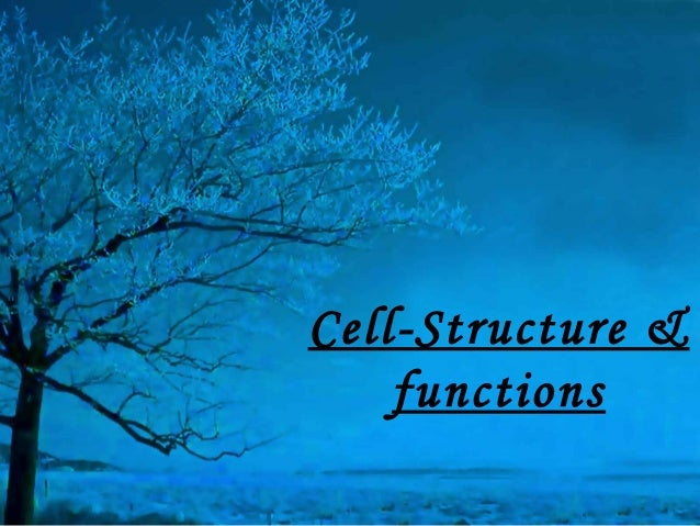Cell-Structure &    functions