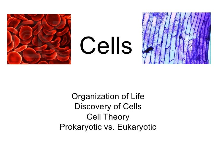 Cells Organization of Life Discovery of Cells Cell Theory Prokaryotic vs. Eukaryotic