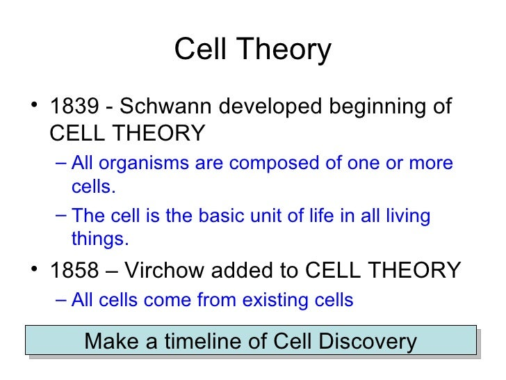 Cell Theory Discussion